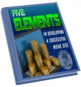 Developing a Successful Niche Site